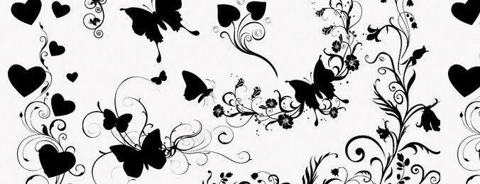 Butterflies and Floral