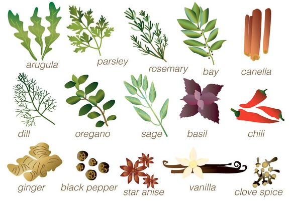 Vector Spices