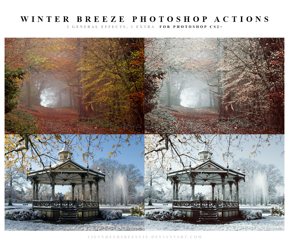 Photoshop Winter breeze Actions