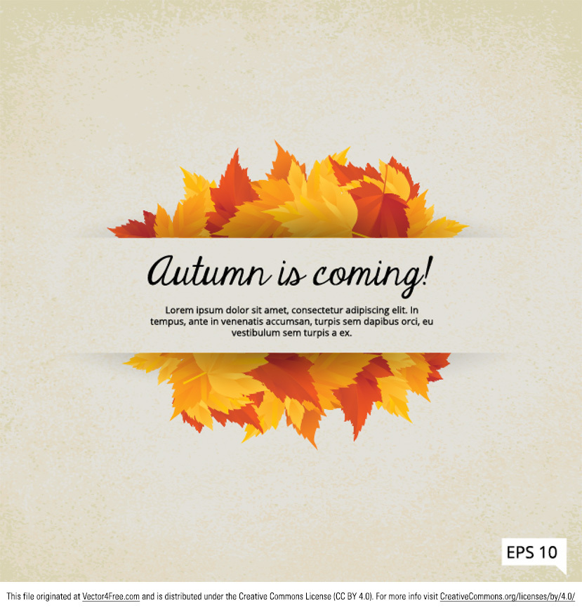 Fall is Coming Leaves Vector Frame