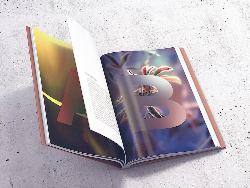 Book MockUp vol1