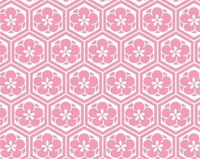梅亀甲(ピンク)