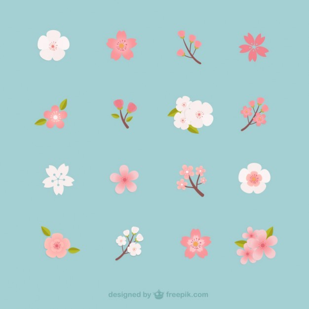 Cherry blossoms collection