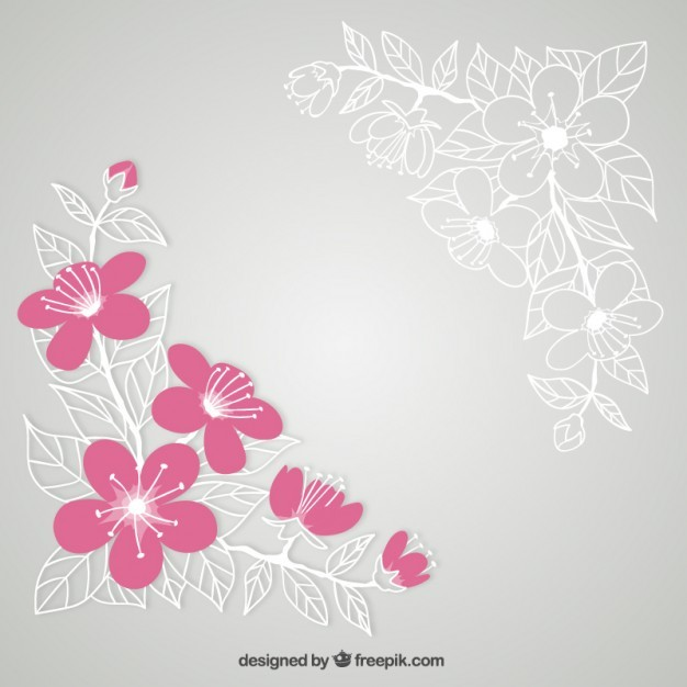 Cherry blossoms illustration