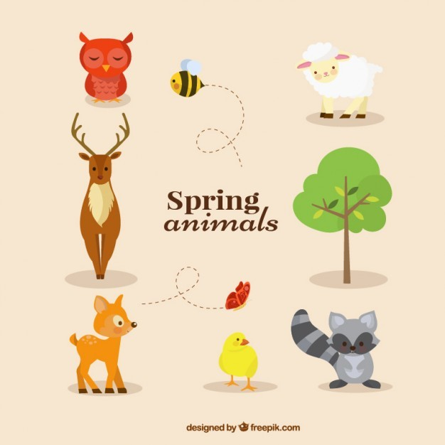 Animals collection in spring