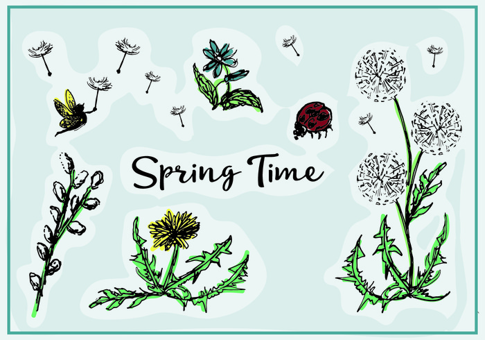 Free Spring Vector Flowers
