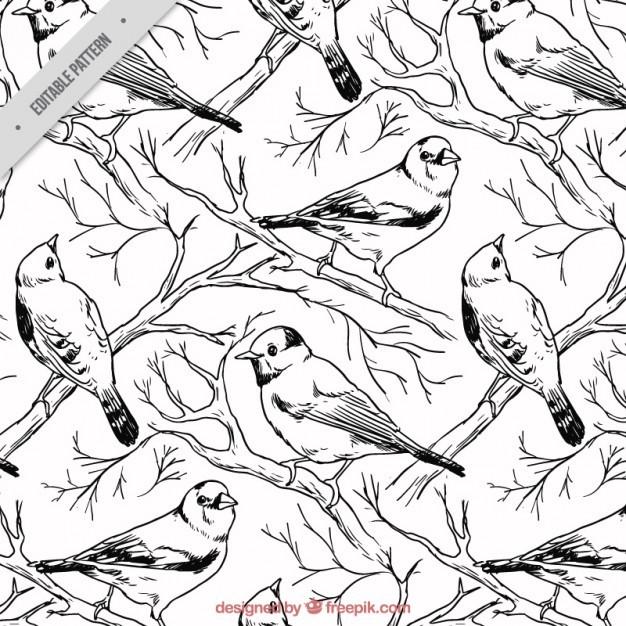 Hand drawn birds pattern