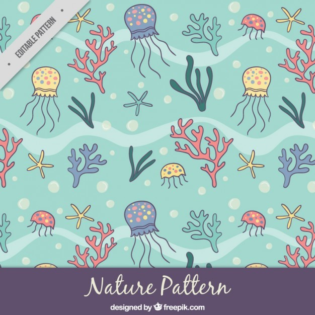 Sketches marine nature pattern
