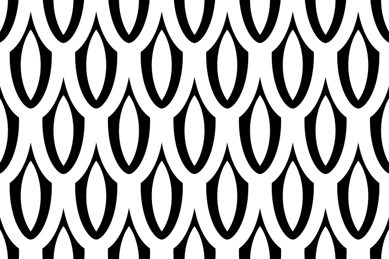 BLACK AND WHITE SCALE PATTERN