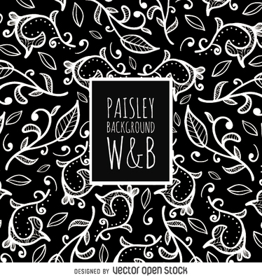 Seamless paisley pattern in black and white