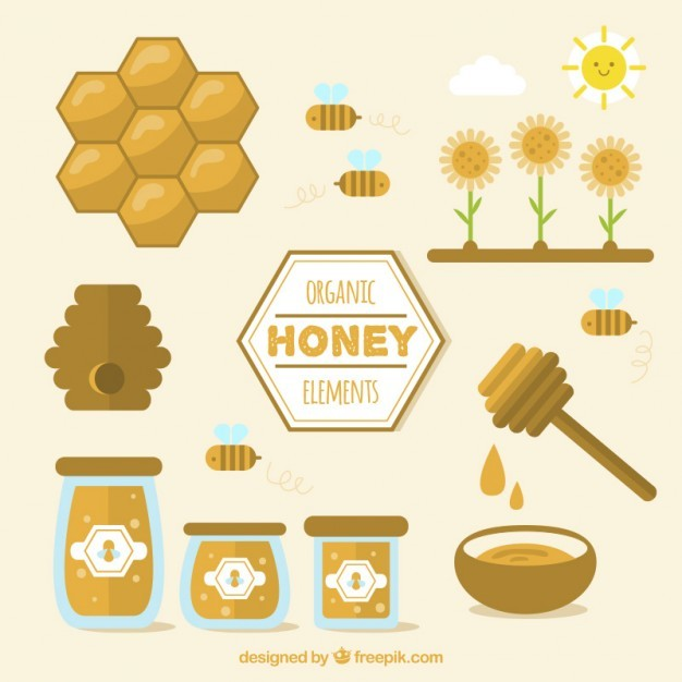 Organic honey elements in flat design