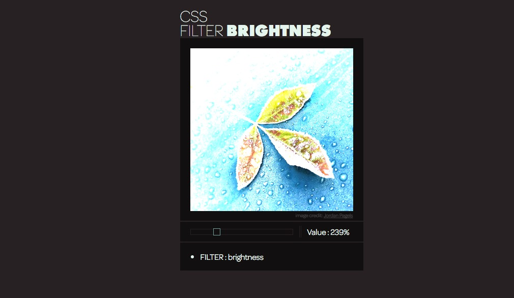 CSS Filter - Brightness