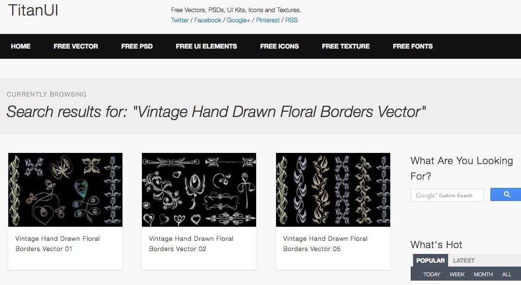 Vintage Hand Drawn Floral Borders Vector
