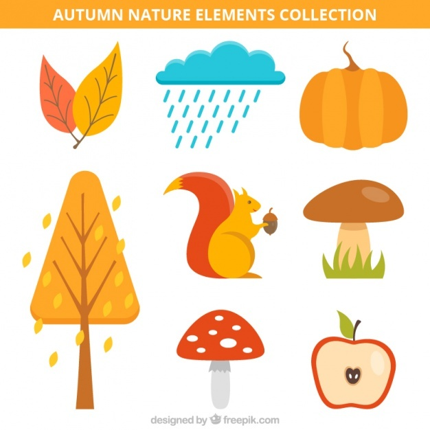 Collection of autumnal items with a squirrel