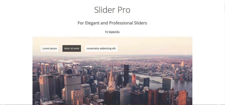 Slider_Pro_2.JPG