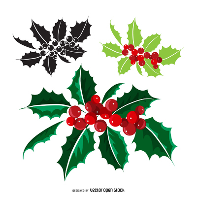 Christmas mistletoe different styles