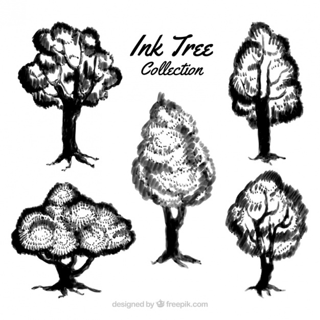 Set of ink tree sketches