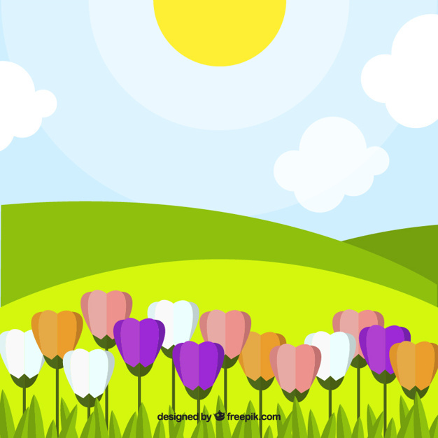 Landscape background with colorful tulips