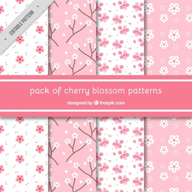 Various decorative patterns of cherry blossoms