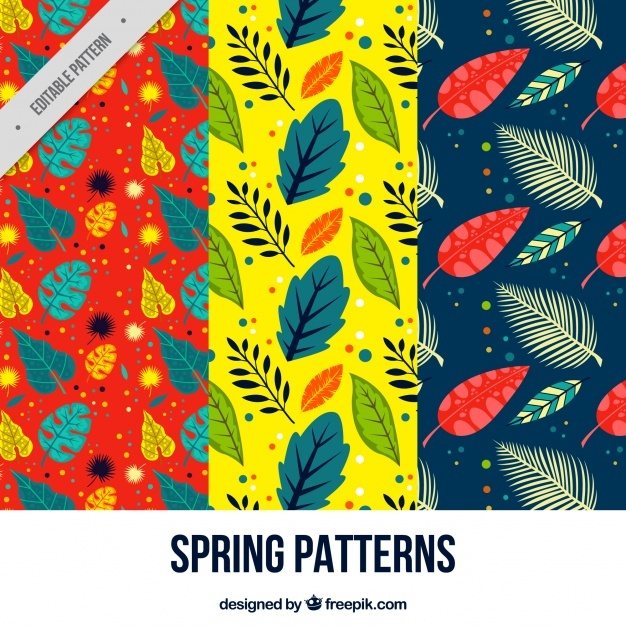 Collection of three spring patterns