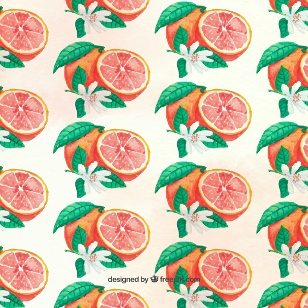Grapefruit pattern painted with watercolor