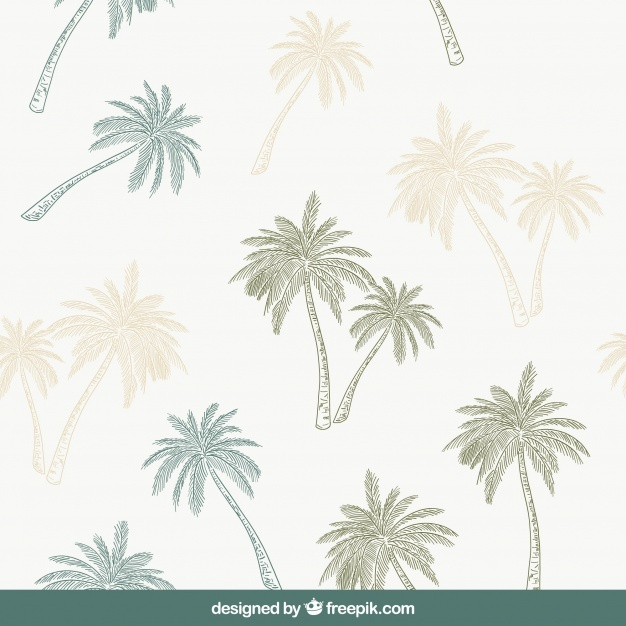 Decorative pattern with hand-drawn palm trees