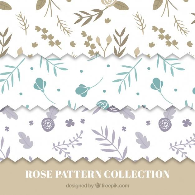 beautiful patterns set of roses