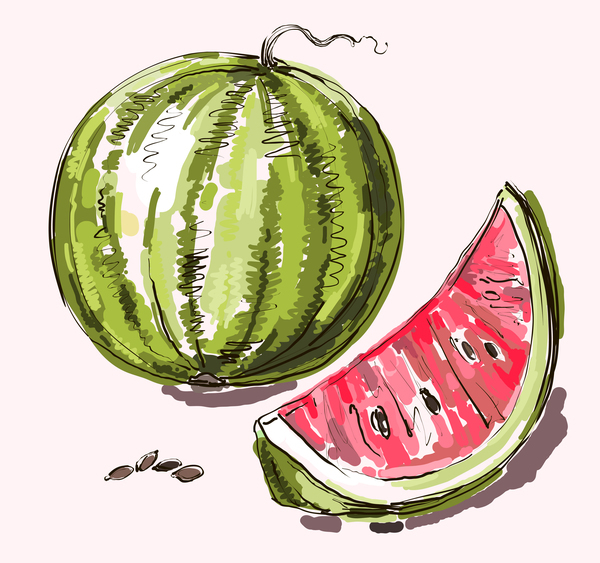 Free EPS file Hand drawn watermelon vectors download