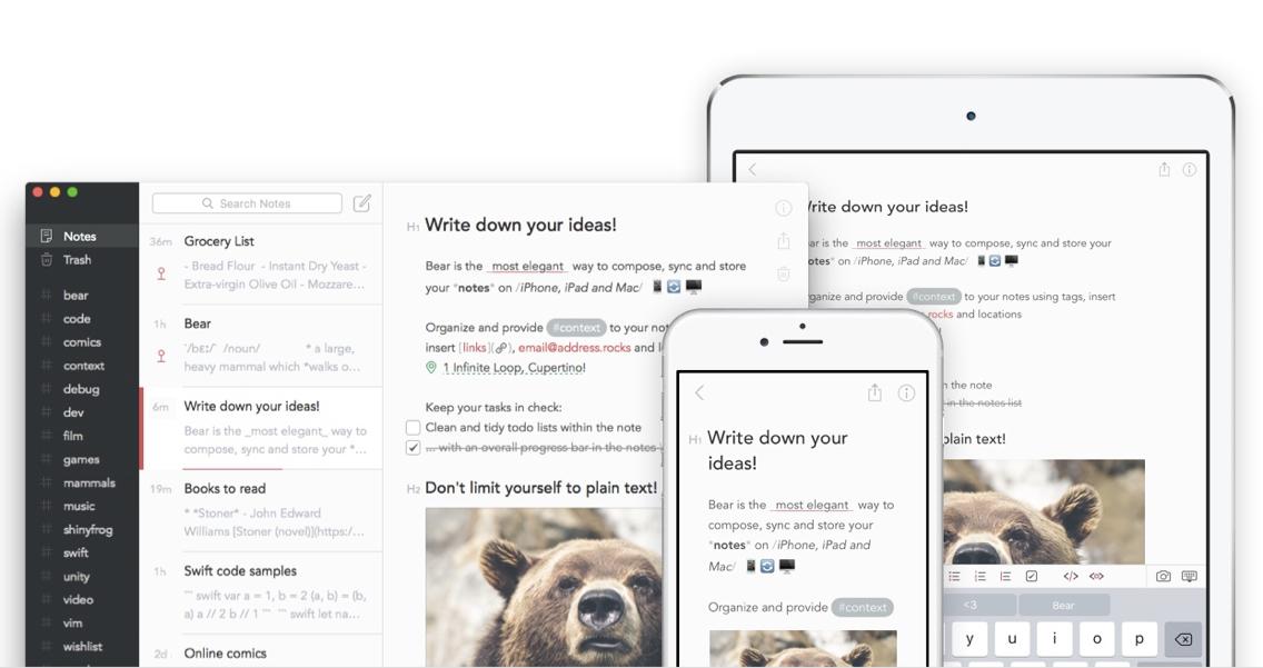 bear-apps-top_-_1.jpg