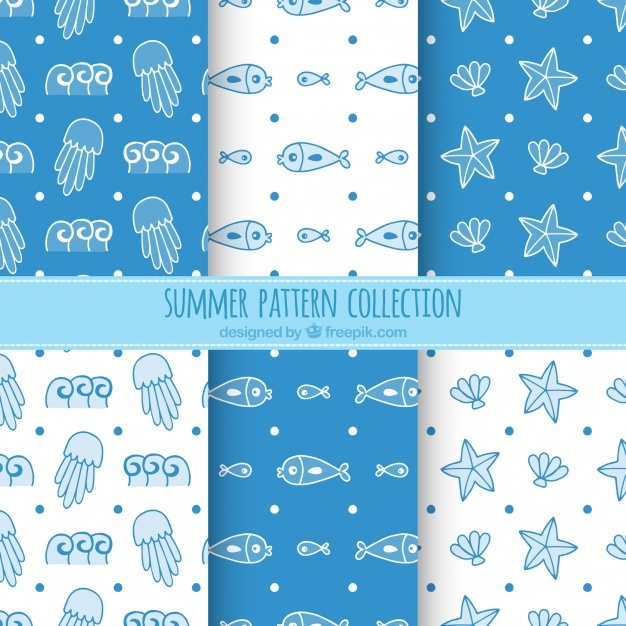 Blue and white summer pattern collection