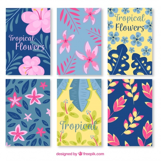 Modern exotic flowercard collection