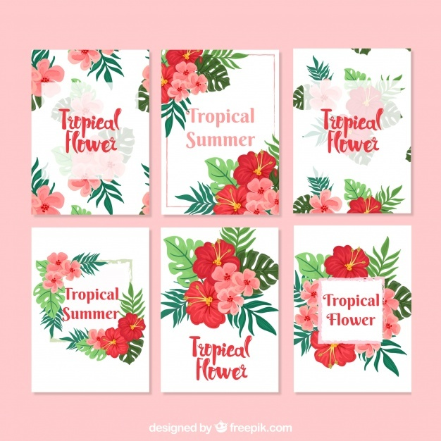 Colorful tropical flower card collection