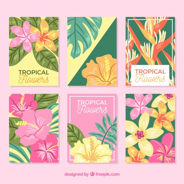 Exotic tropical flowers cards