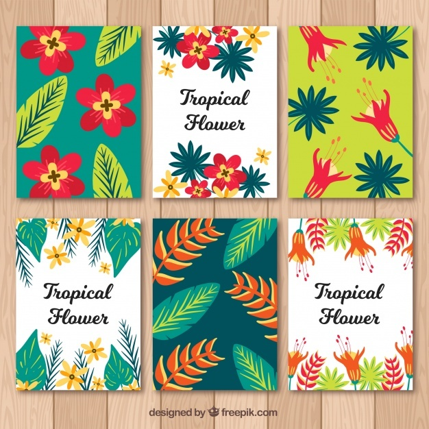 Flat design tropical summer card collection