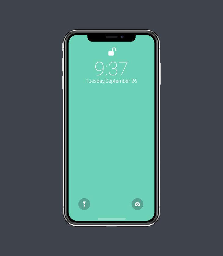 Vector iPhone X Mockup
