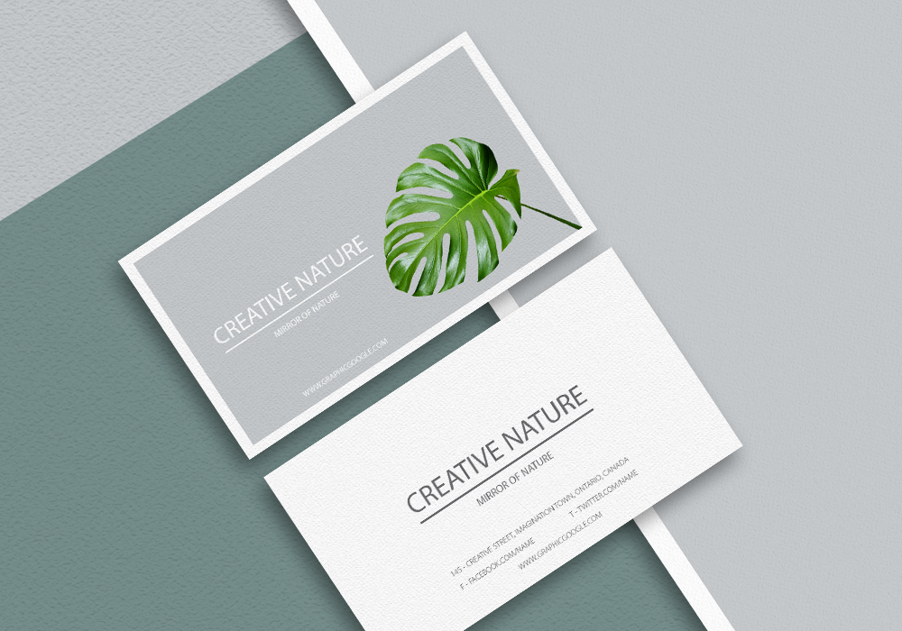 Free Letter Head and Business Card Mockup PSD