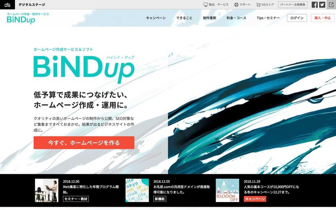 bindup_-_1.jpg