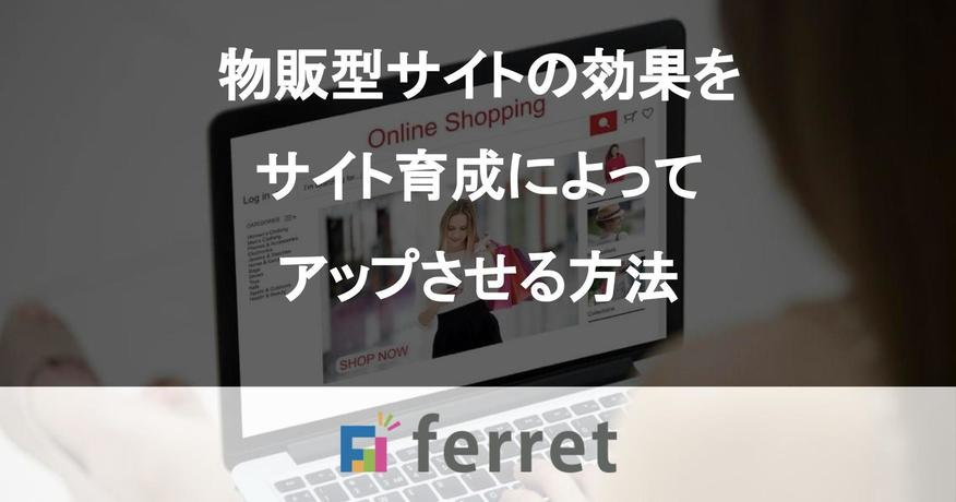 物販型サイトの効果をサイト育成によってアップさせる方法