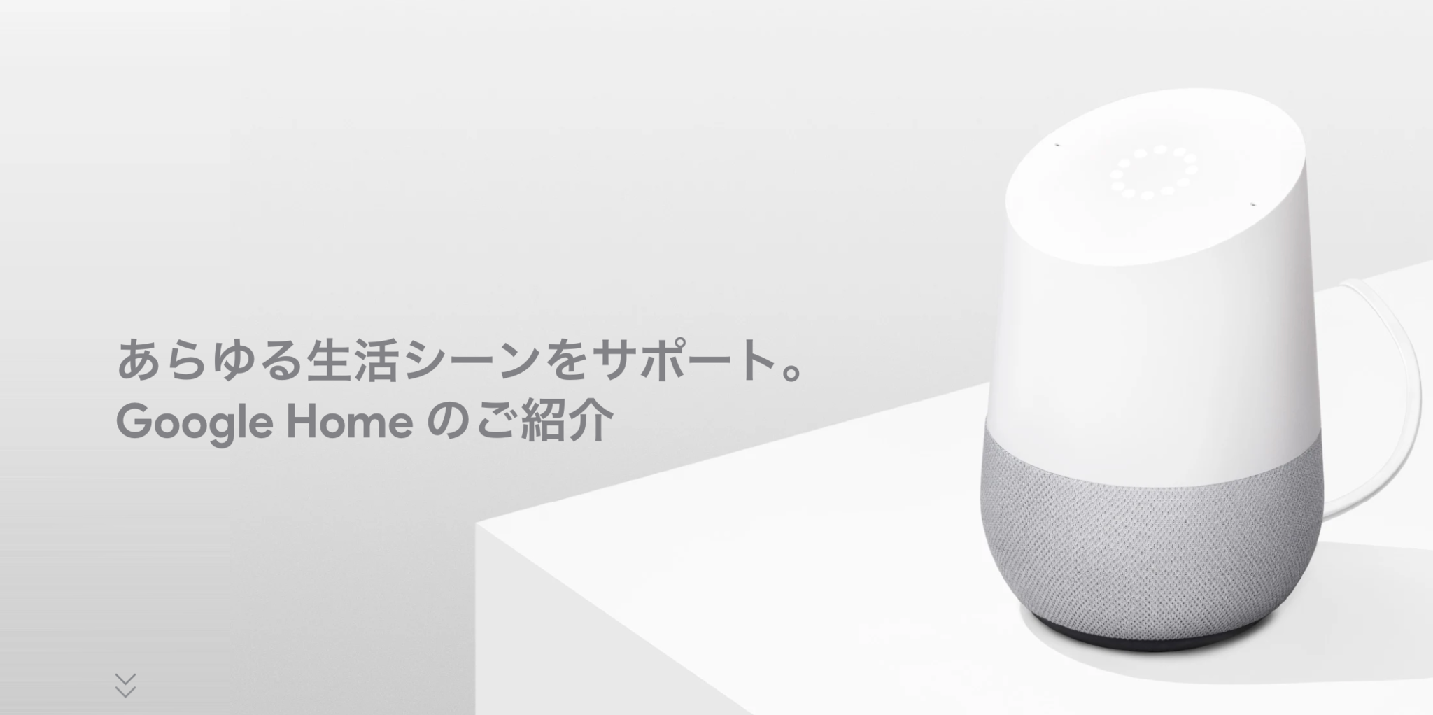google-home-20190128.png