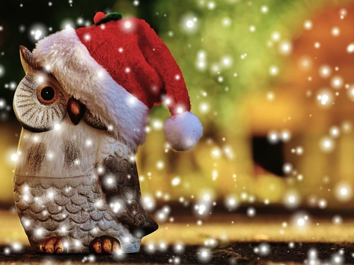「クリスマス間近!SNS活用から動画まで、キャンペーン事例20選」の見出し画像