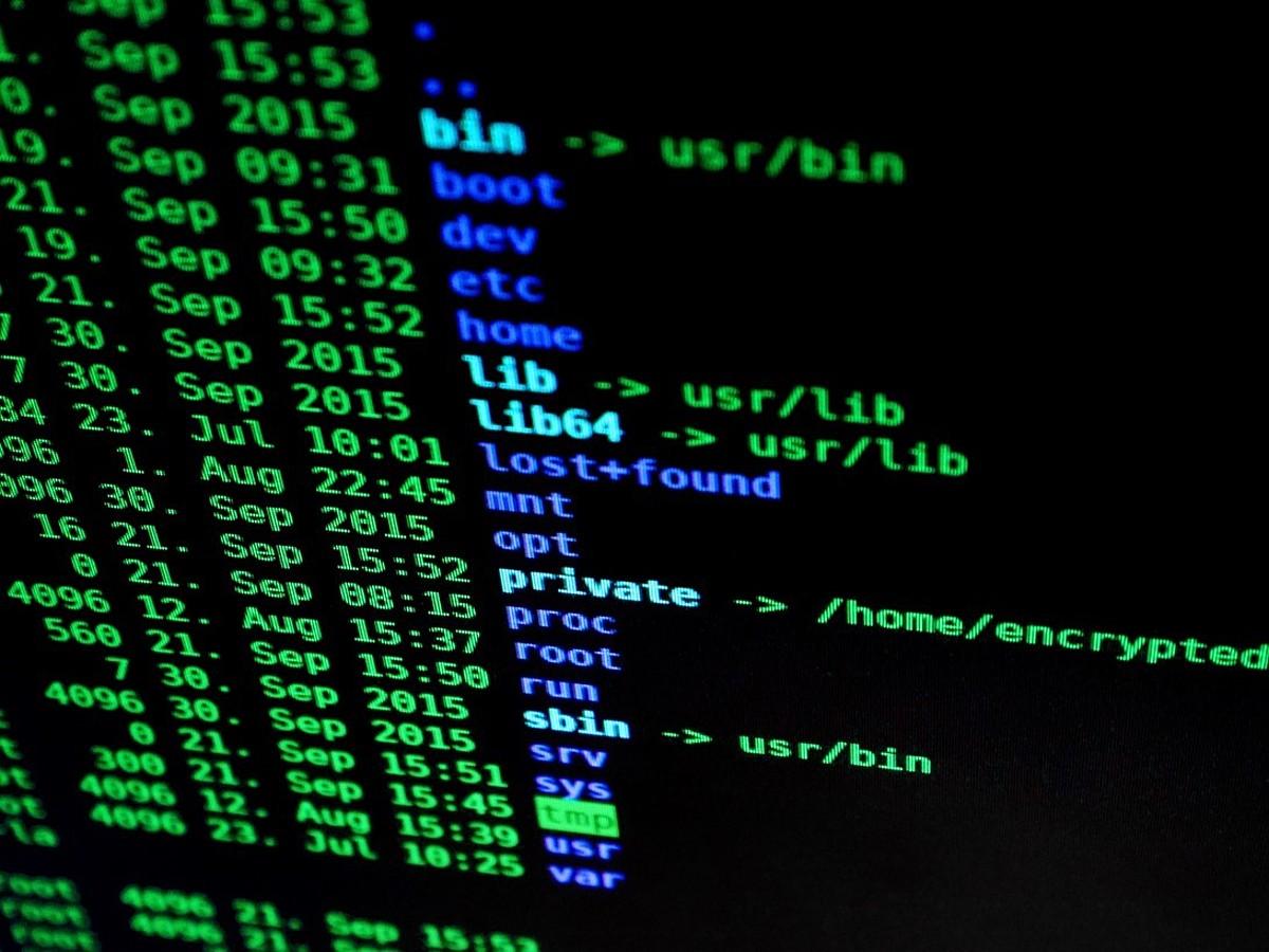 「もう怖くない!初心者でも覚えておけばLinuxが活用できる基本コマンド10選」の見出し画像