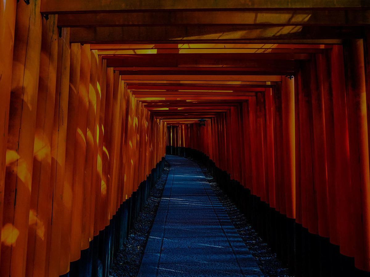 """「【保存版】日本のレトロな雰囲気を醸し出す""""和""""のデザイン!オススメ15選」の見出し画像"""