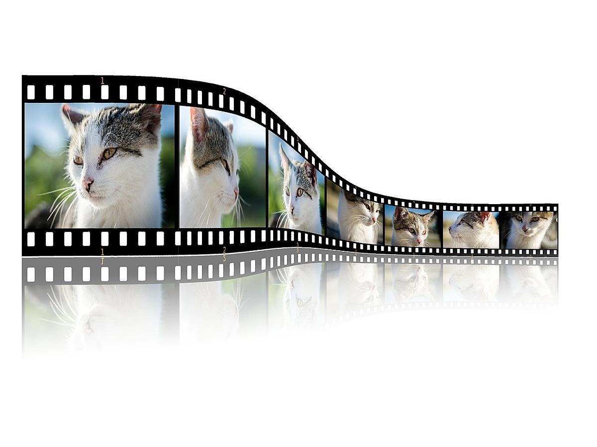 「1回で複数枚の写真や動画が投稿できる!インスタグラムの新機能の使用方法を解説」の見出し画像