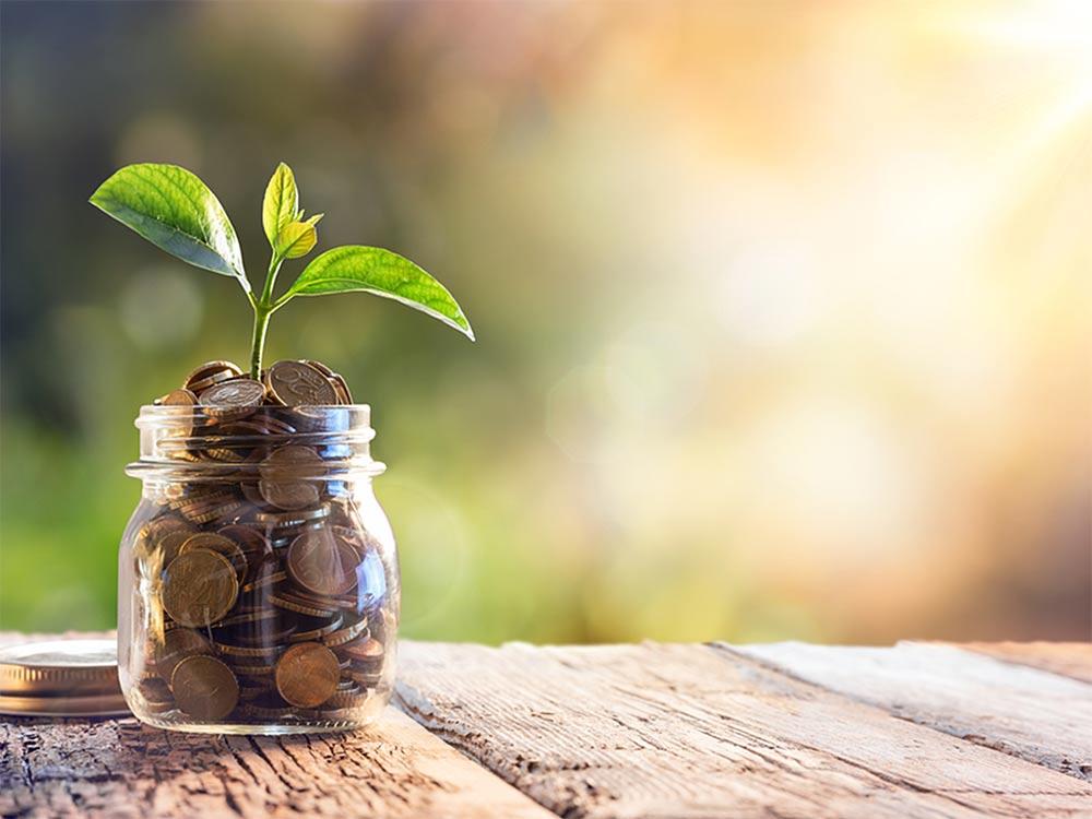 限られた予算でWebマーケティングをおこなうために!IT導入補助金を解説