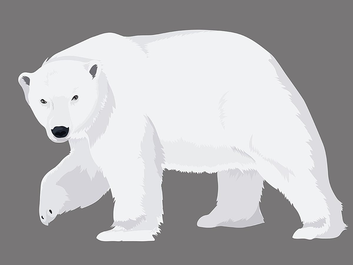 「Apple Design Awards 2017に選ばれたテキストアプリ「Bear」の使い方を解説」の見出し画像
