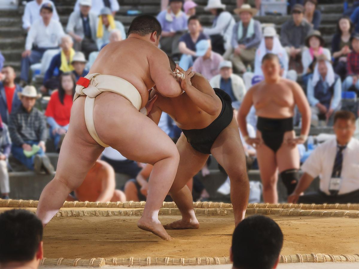 「八百長疑惑から一転人気急上昇!日本相撲協会から学ぶ、Twitterでファンを作る「舞台裏」の見せ方とは?」の見出し画像