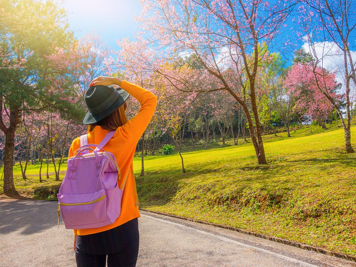「新しい日本の楽しみ方を提供!直近の訪日外国人向けサービスを紹介」の見出し画像