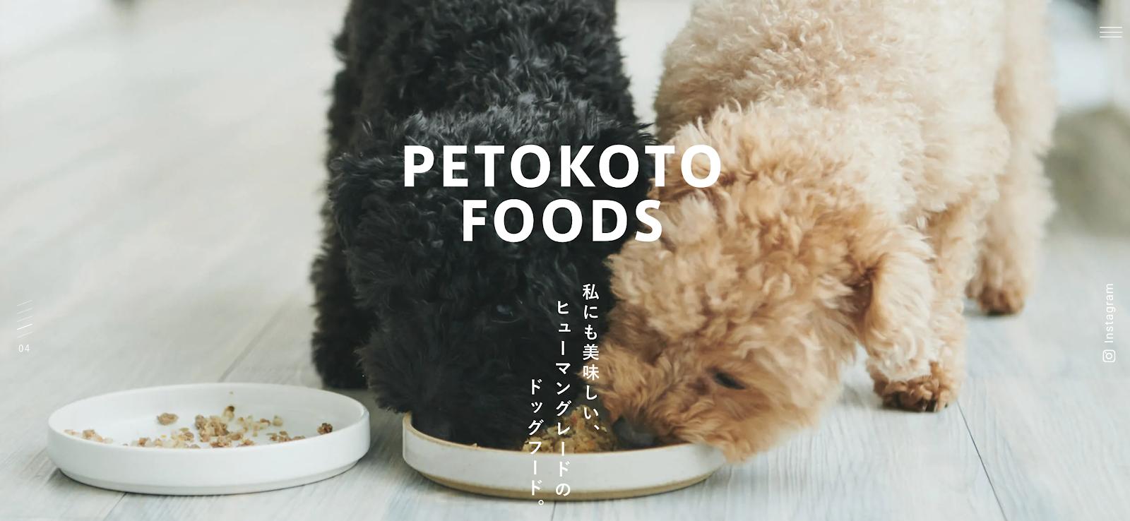PETOKOTO.png