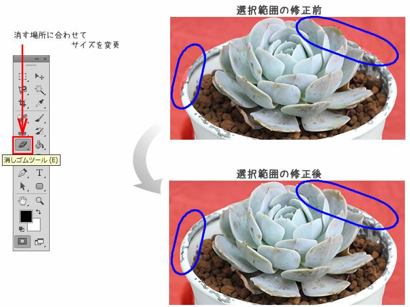 image15.jpg