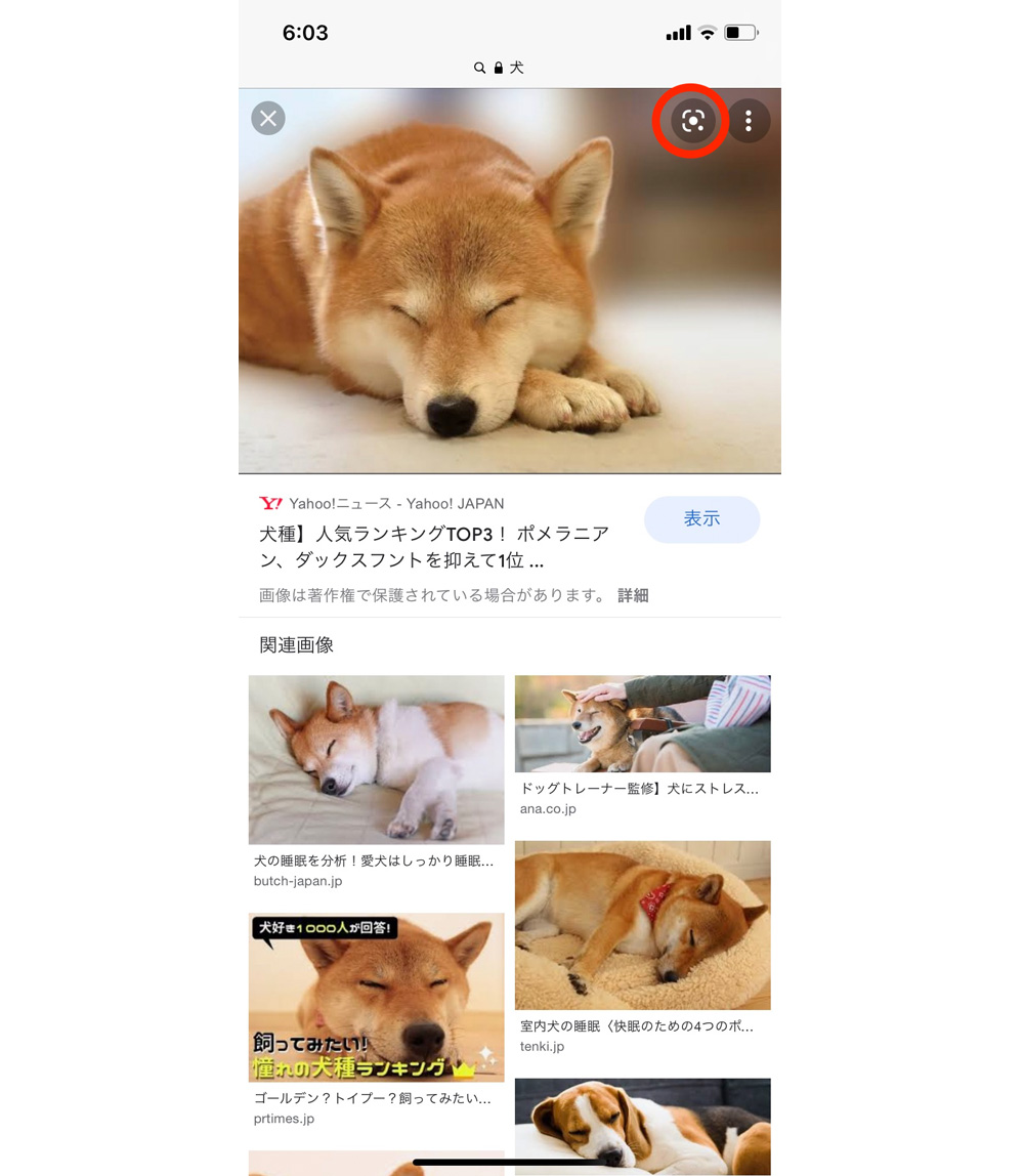 google_gazo-3.jpg